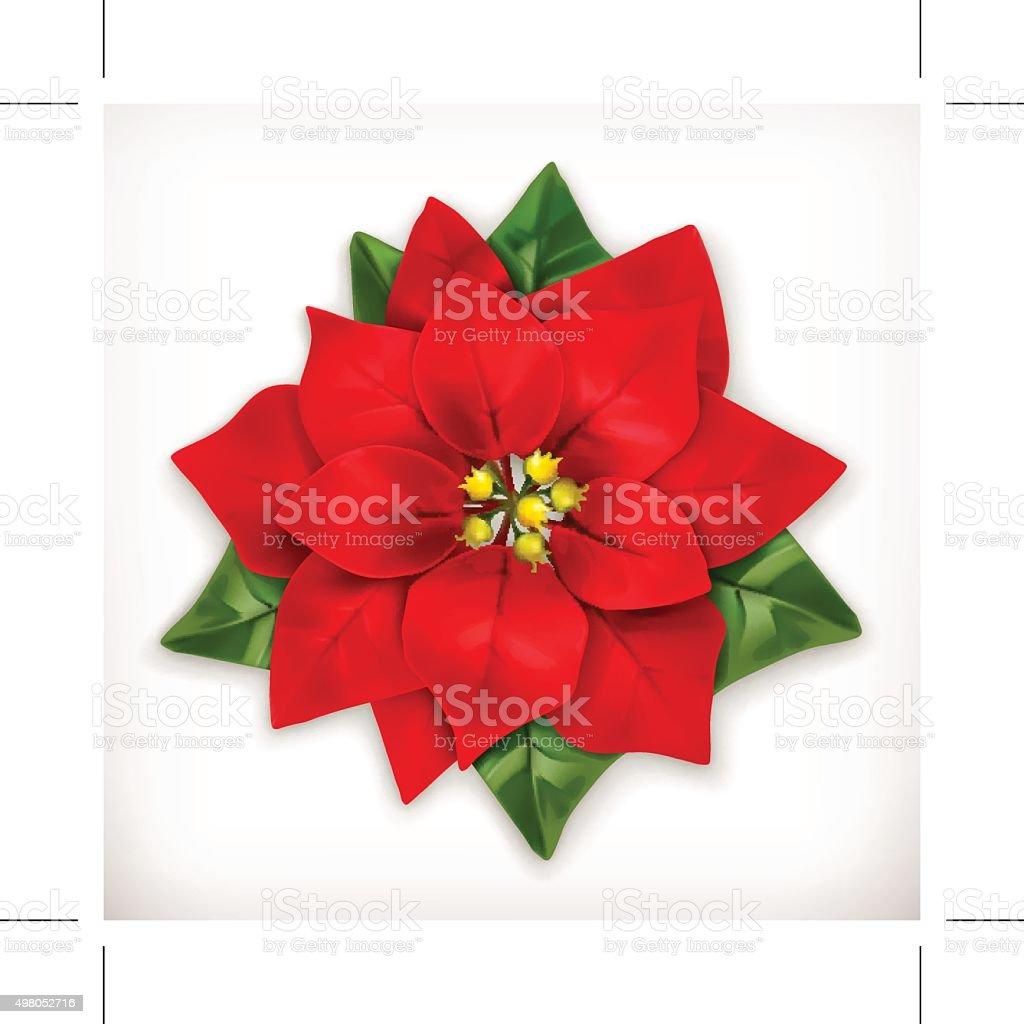 Poinsettia Christmas Star vector art illustration