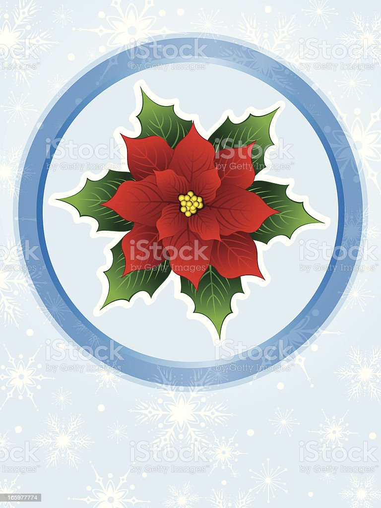 Poinsettia royalty-free stock vector art