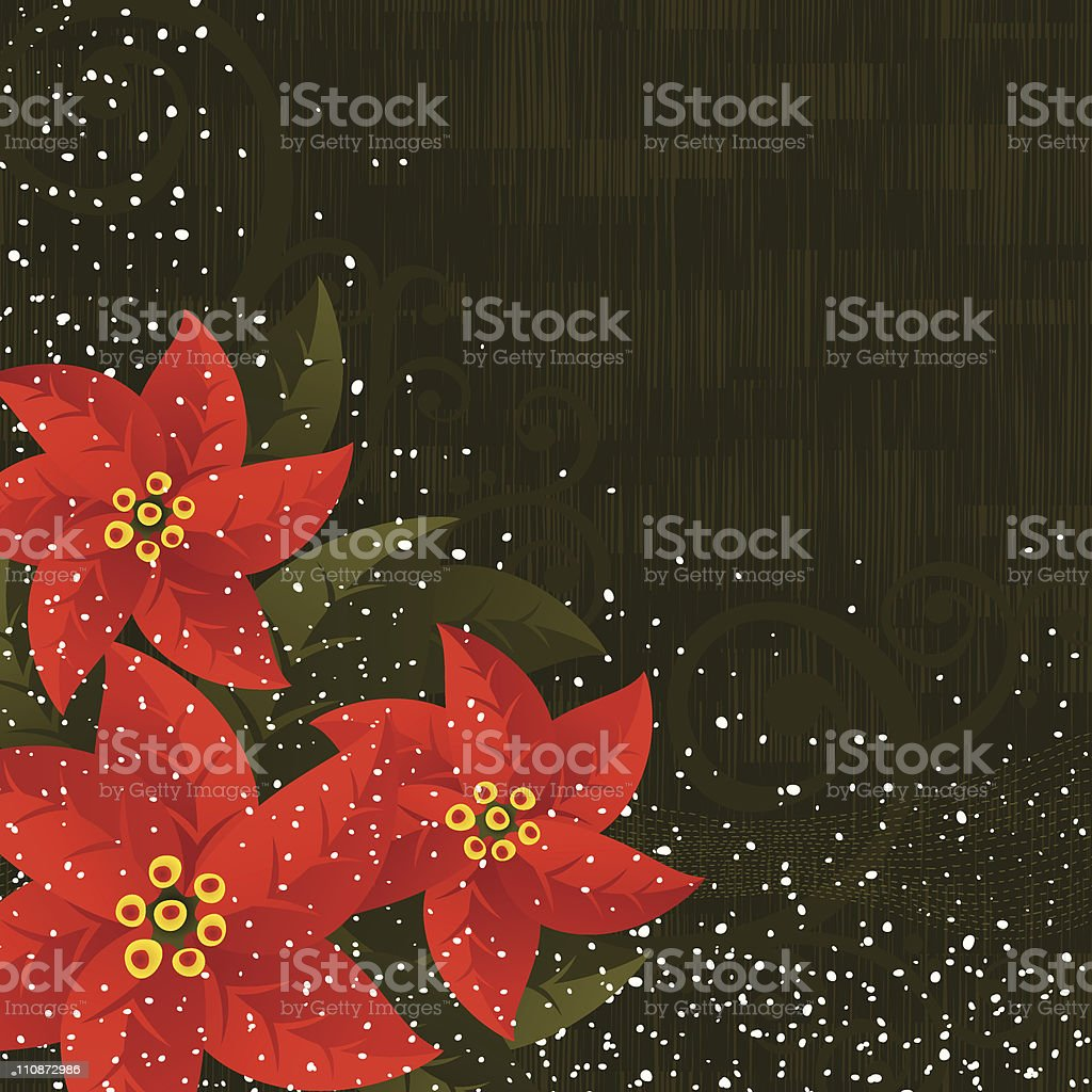 Poinsettias Xmas background royalty-free stock vector art