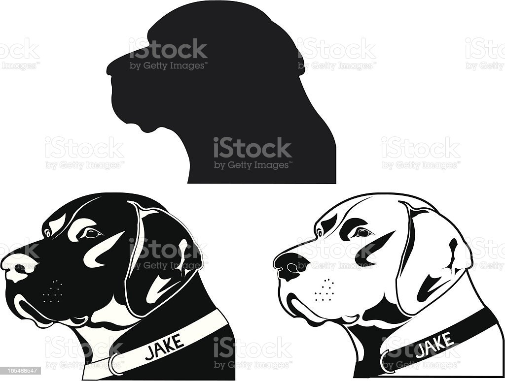 Pointer Dog royalty-free stock vector art
