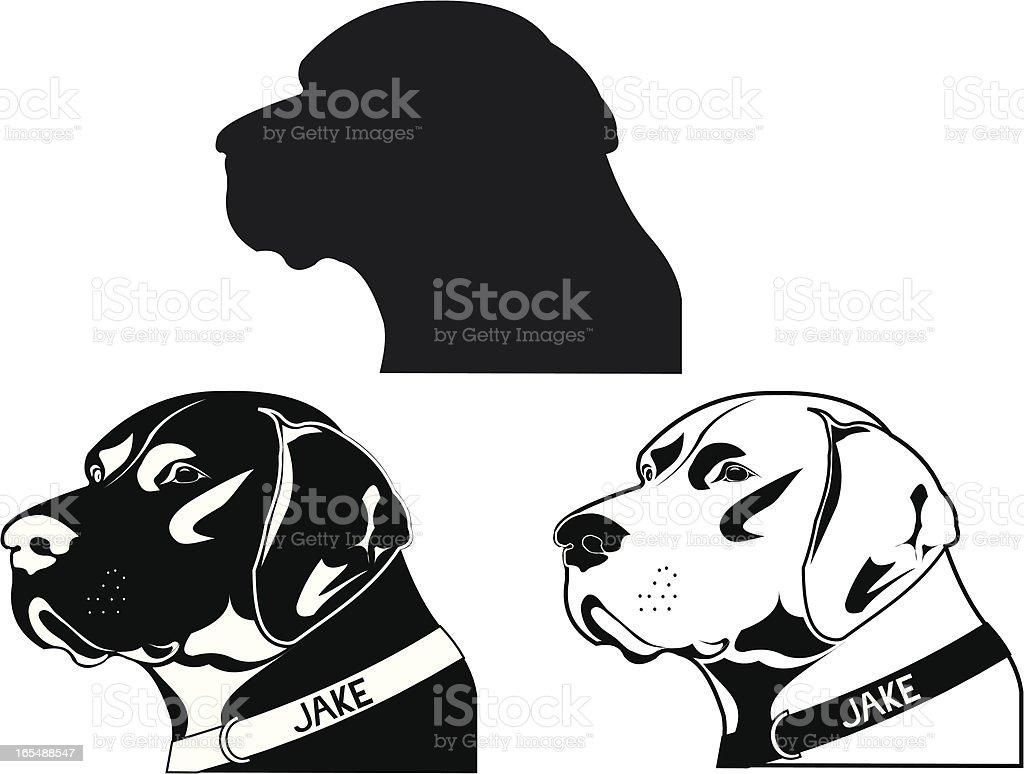 Pointer Dog vector art illustration