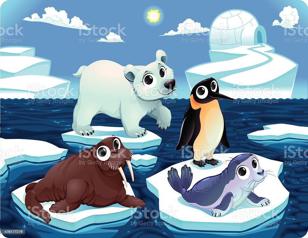 O Pinguim Esta Em Uma Banquisa De Gelo Vetor Do Emaranhado Do Zen ...