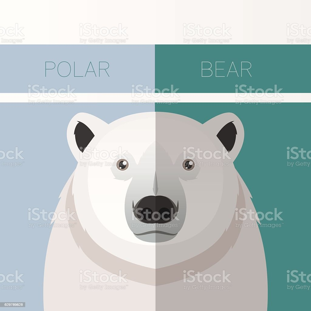 Polar Bear flat postcard vector art illustration