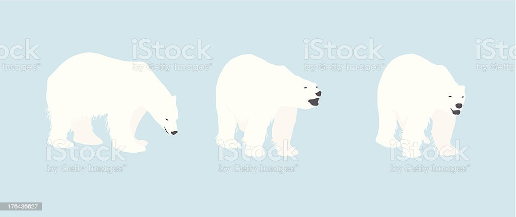 Polar Bear Silhouettes vector art illustration