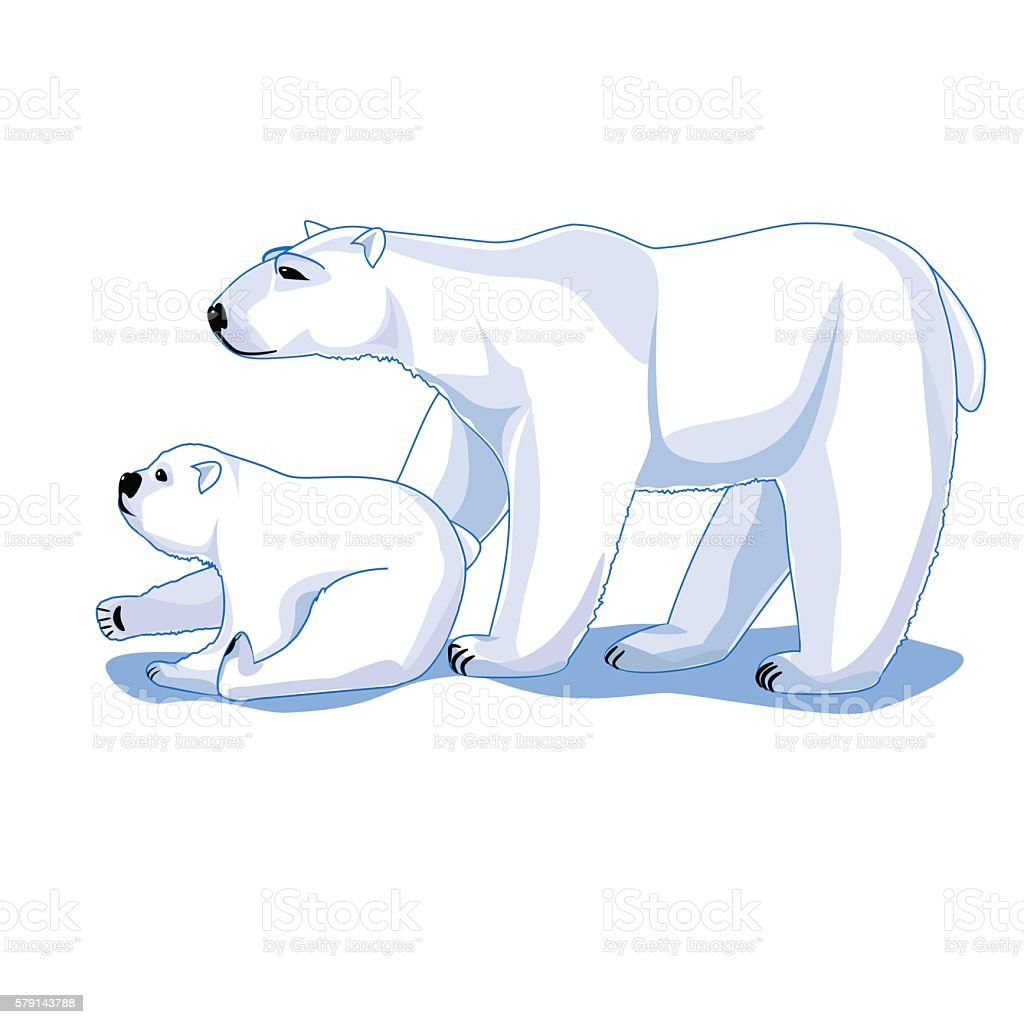 Polar bears mom and cub isolated on white background royalty-free stock vector art
