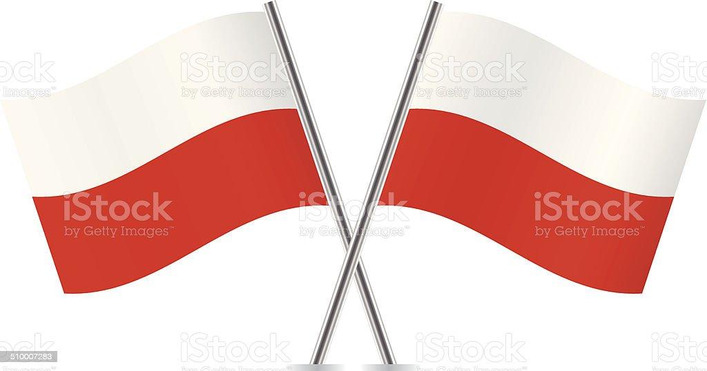 Polish flags. Vector. vector art illustration