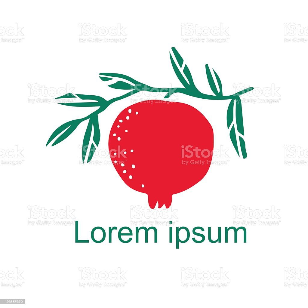 Pomegranate fruit , branch with leaves vector art illustration