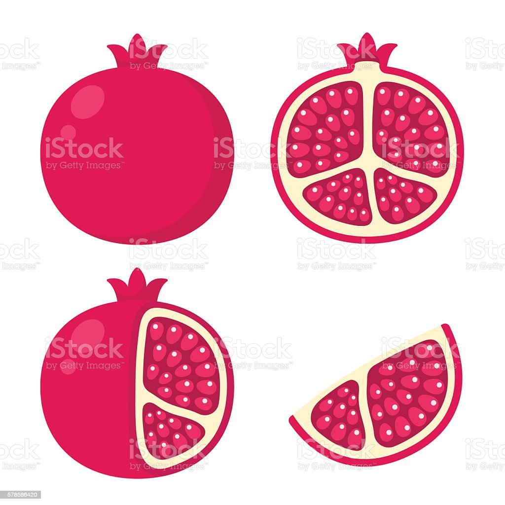 pomegranate illustration set vector art illustration