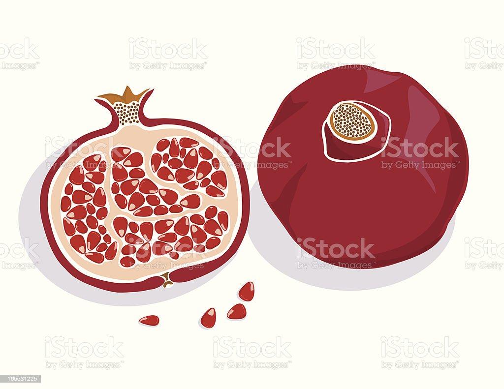 Pomegranate vector art illustration