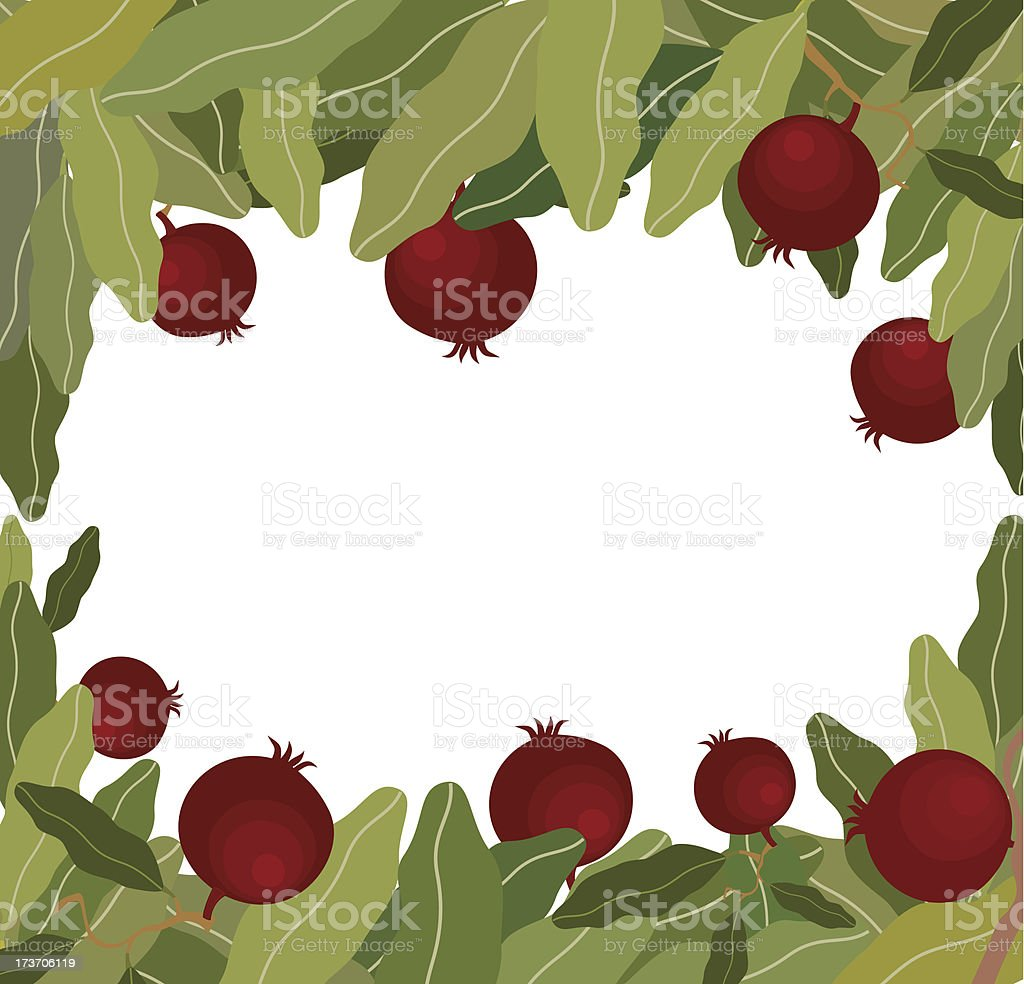 Pomegranates On Branch royalty-free stock vector art