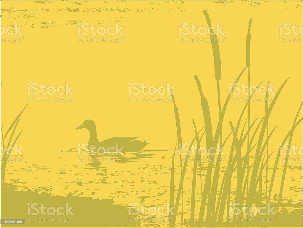 pond at dusk vector art illustration