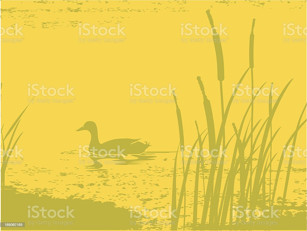 pond at dusk vector art illustration