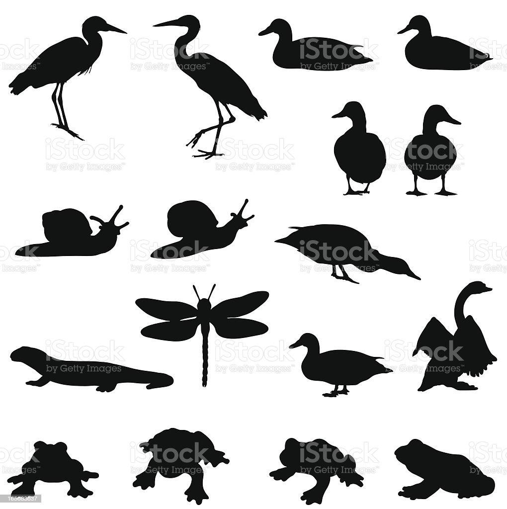 Pond life silhouettes vector art illustration