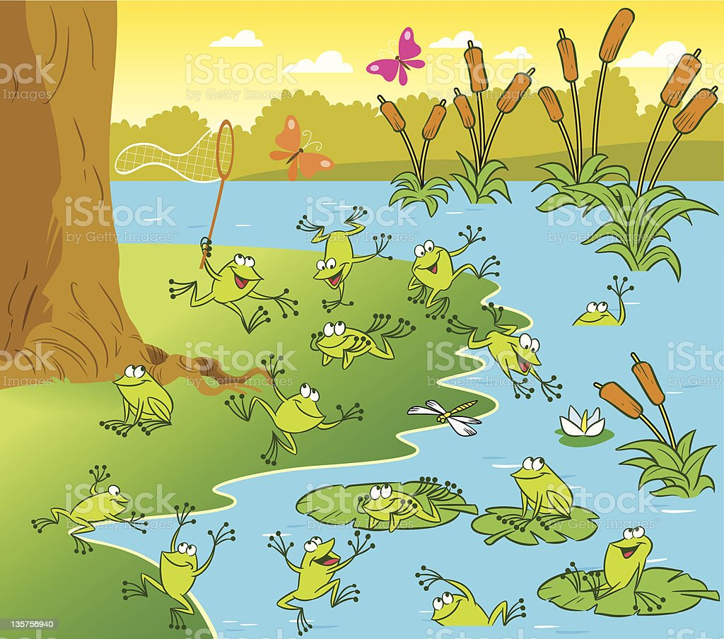 Pond with the frogs royalty-free stock vector art
