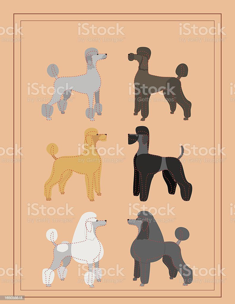 Poodles - Professional Dog Grooming Chart royalty-free stock vector art