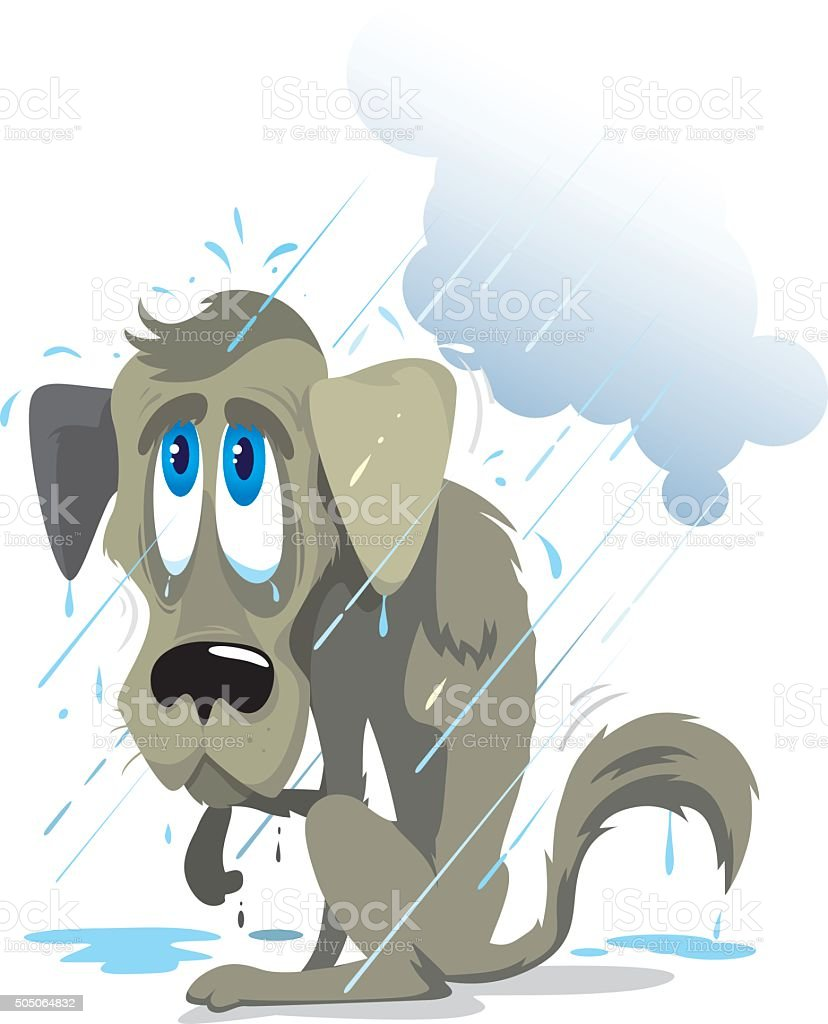 poor wet dog vector art illustration