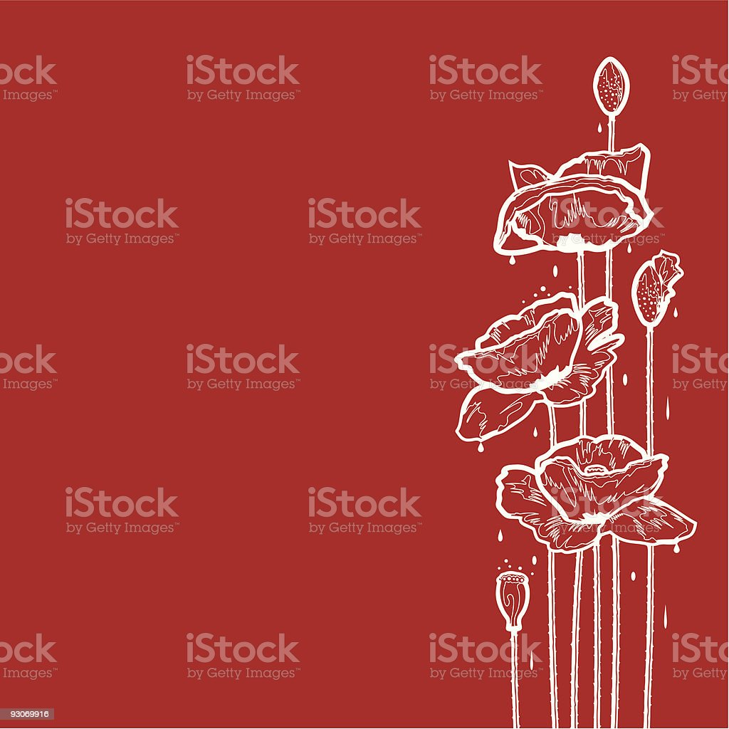Poppies after rain royalty-free stock vector art