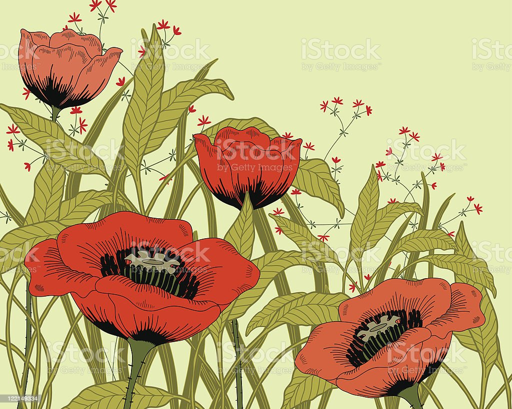 Poppies. royalty-free stock vector art