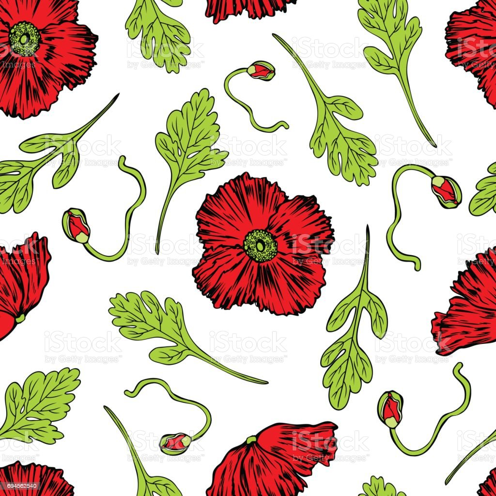 Romantic vector seamless background greeting card wallpaper vector art -  Poppy Flower Bud Leaf Vector Engraving Sketch Hand Drawn Isolated On White Seamless
