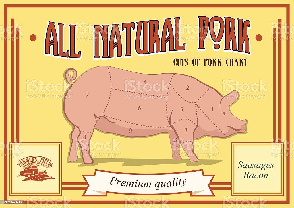 Pork cuts diagram, vector illustration for your design. Retro poster vector art illustration