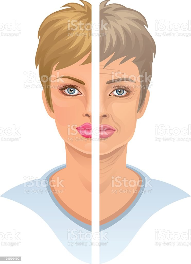 Portrait displaying the differences when a woman ages royalty-free stock vector art