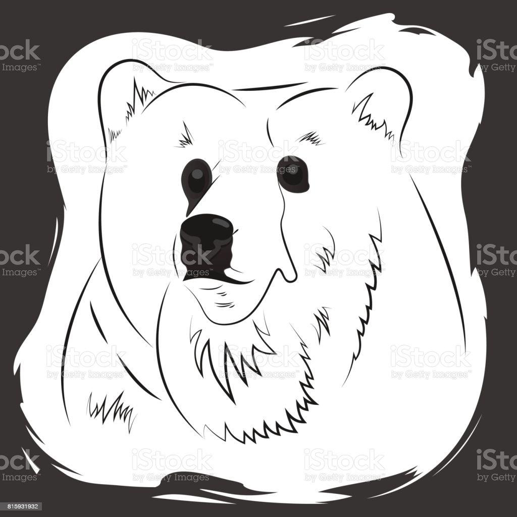 Portrait of a bear T-shirt, singlet, bag print. vector art illustration