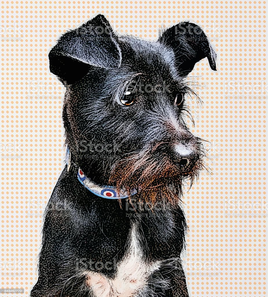 Portrait of a Black Terrier Mixed Breed Dog vector art illustration