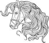 Portrait of a horse with long decorated mane.