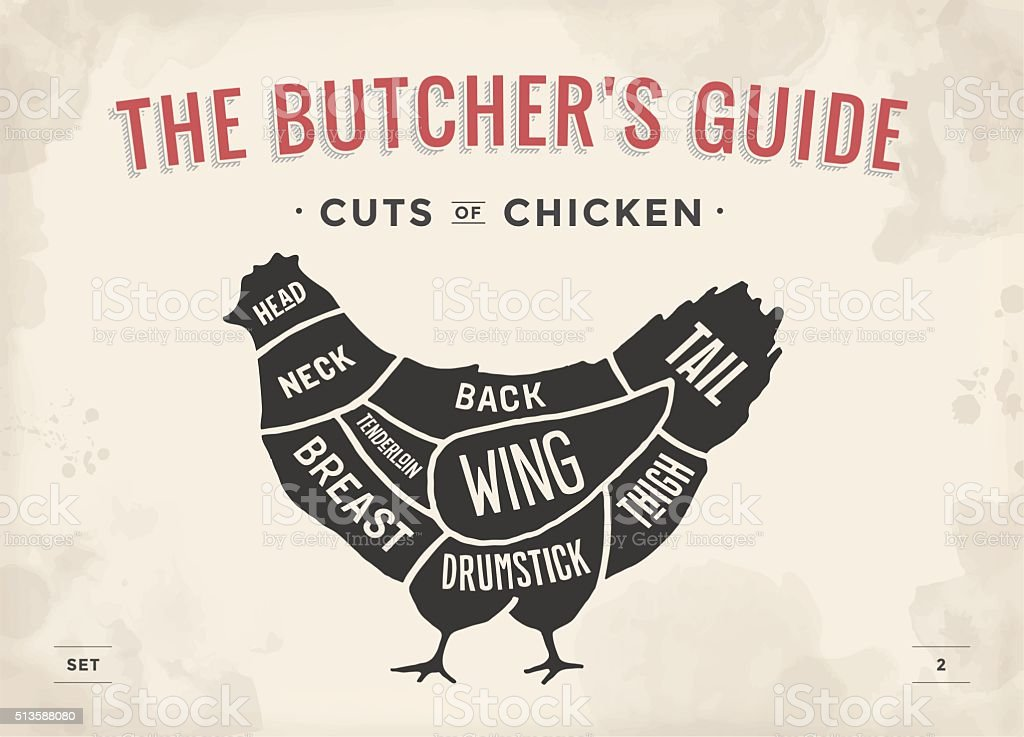 Poster Butcher diagram and scheme - Chicken vector art illustration