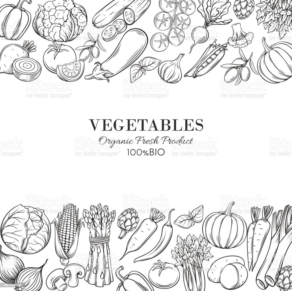 Poster template borders with hand drawn vegetables vector art illustration