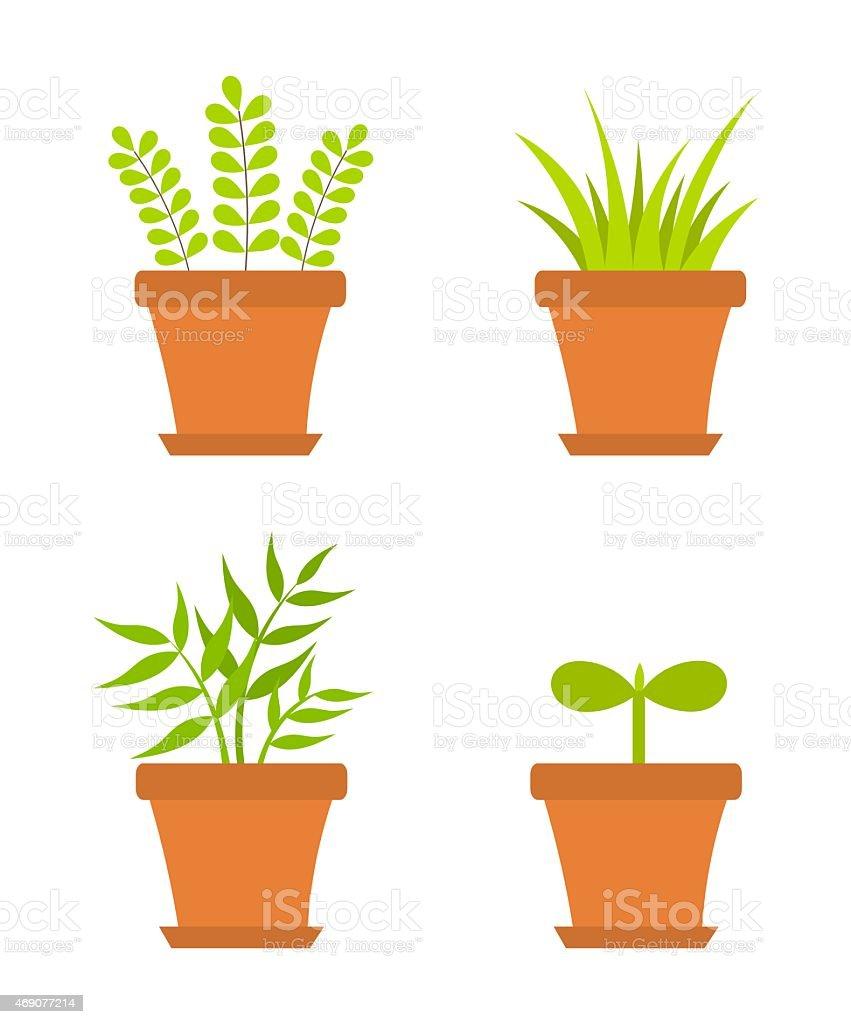 Pot plants vector art illustration