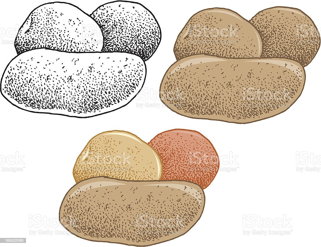 Potato - Spud Tuber royalty-free stock vector art