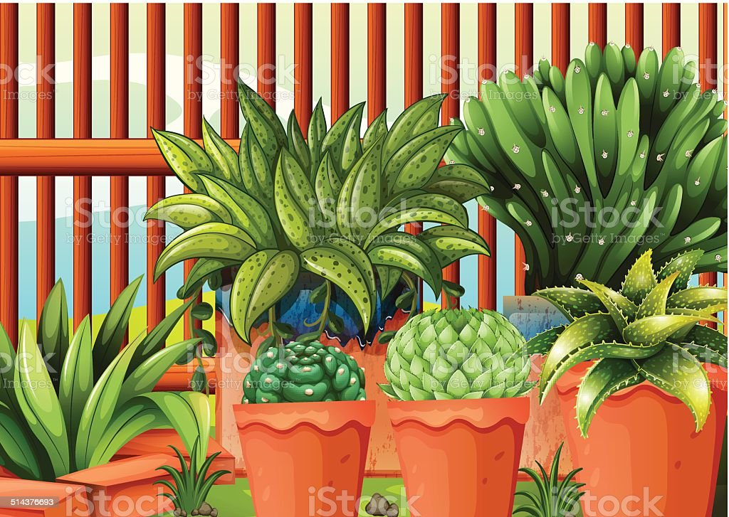 Pots with plants vector art illustration