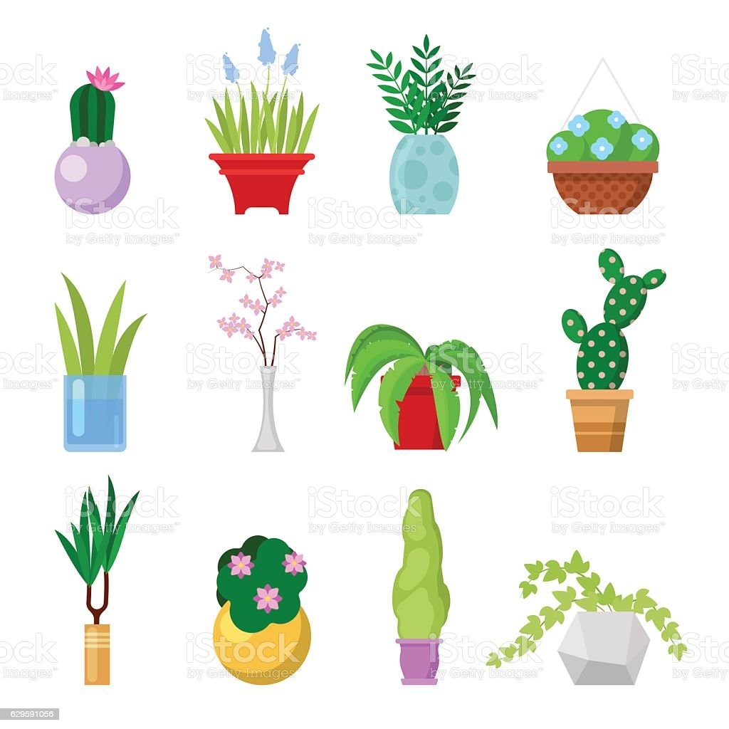 Potted Home Plants Set. Decorative Houseplants and Flowers in Pots vector art illustration