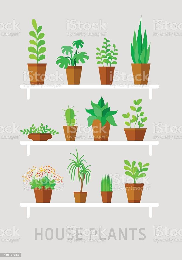 potted plants flat vector set vector art illustration