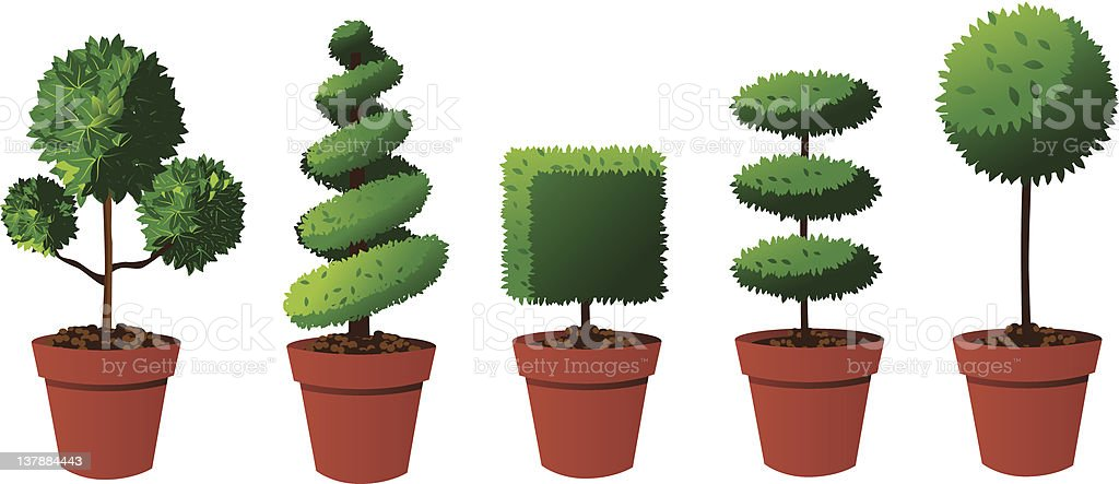 Potted topiary collection vector art illustration