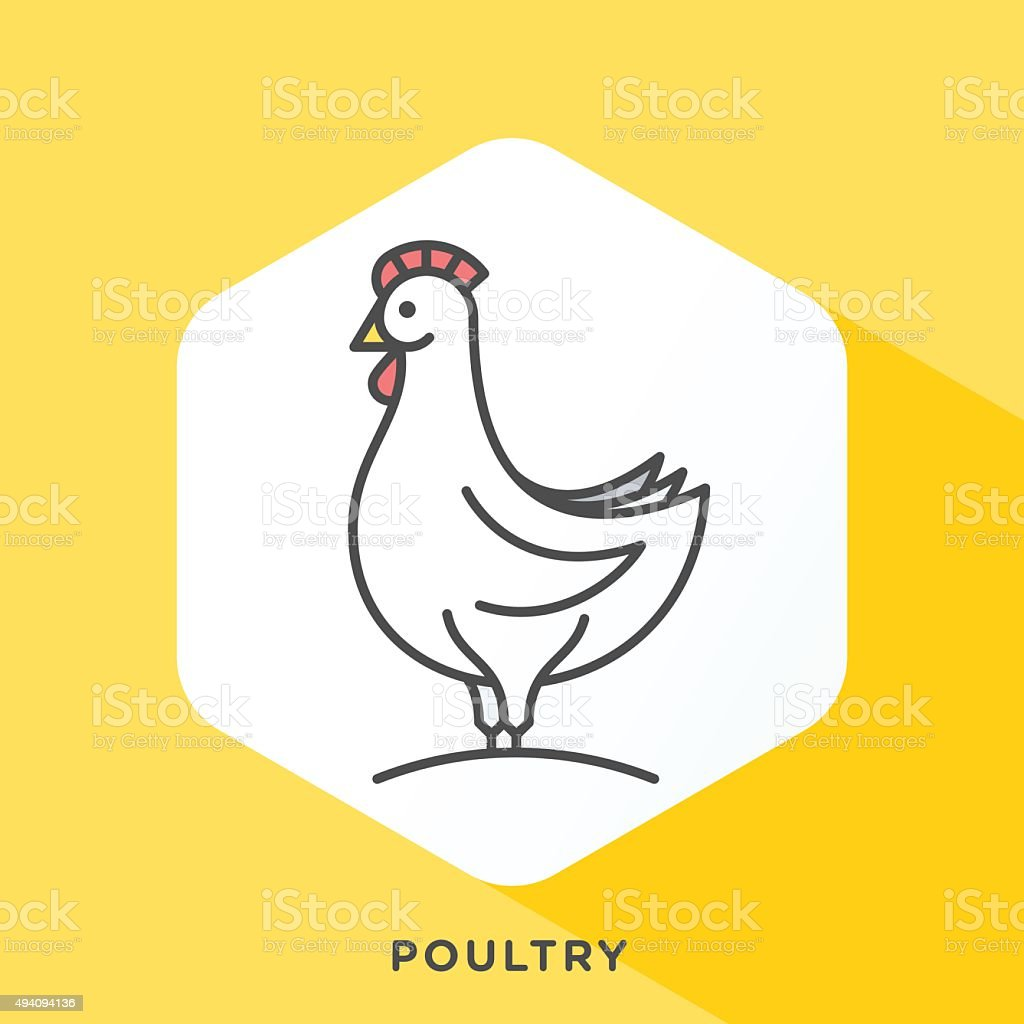 Poultry Icon vector art illustration