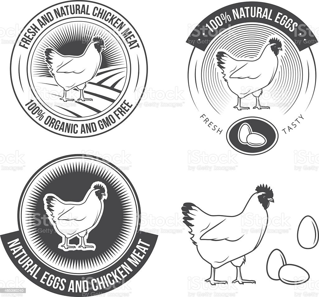 Poultry set vector art illustration
