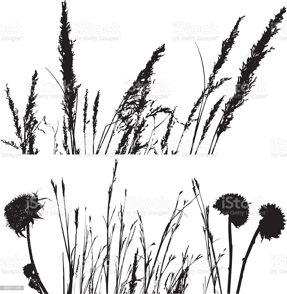 Prairie plant and grass silhouettes vector art illustration