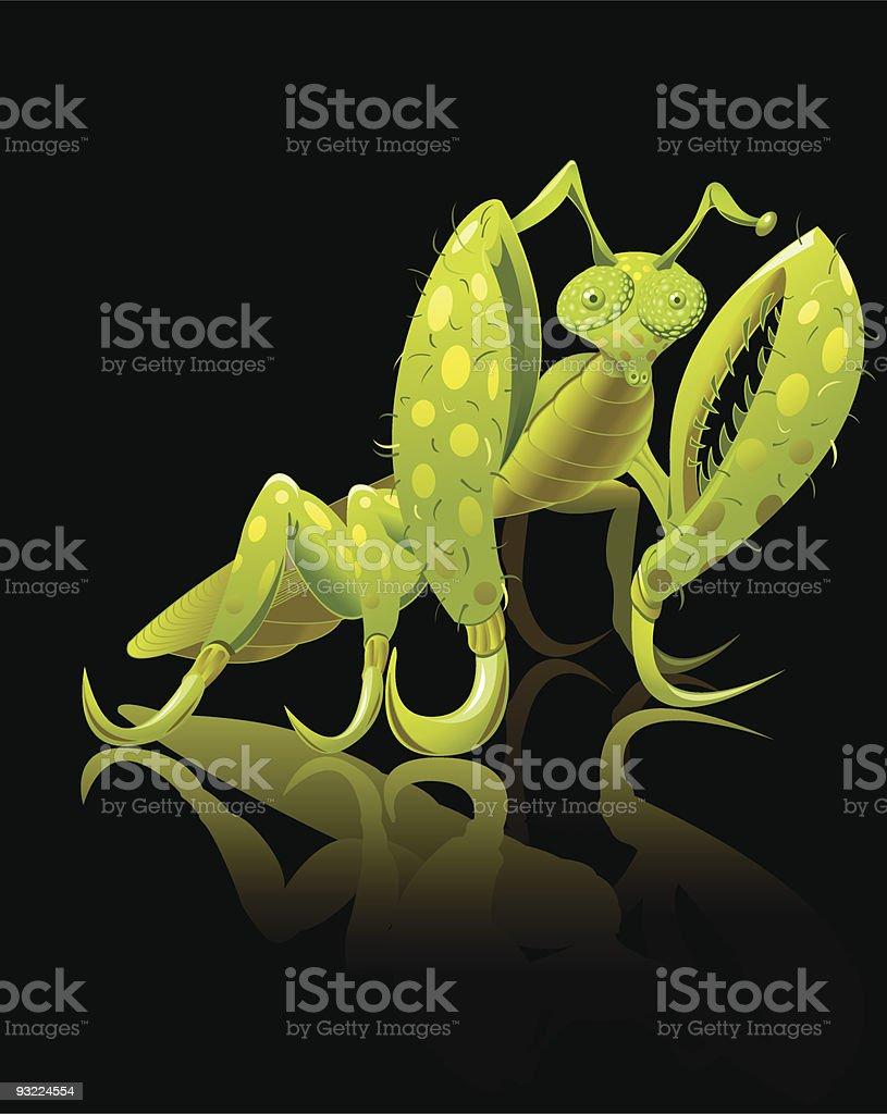 Praying Mantis vector art illustration