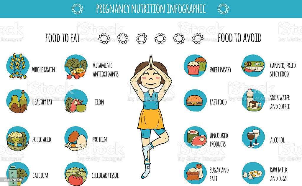 Pregnancy nutrition infographic vector art illustration