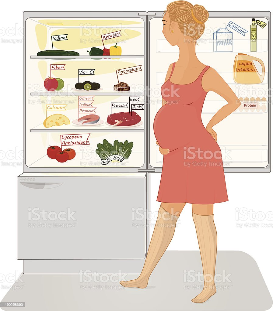 Pregnant woman and a fridge royalty-free stock vector art