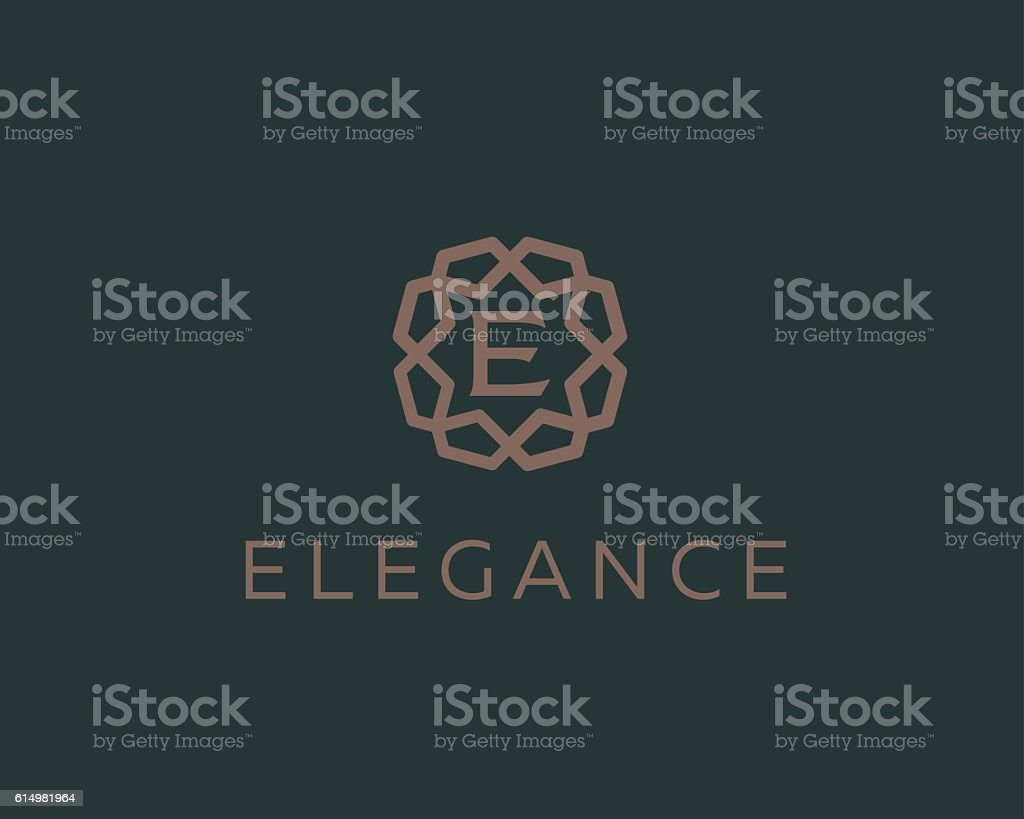 Premium letter E logo icon vector design. Luxury jewelry frame vector art illustration
