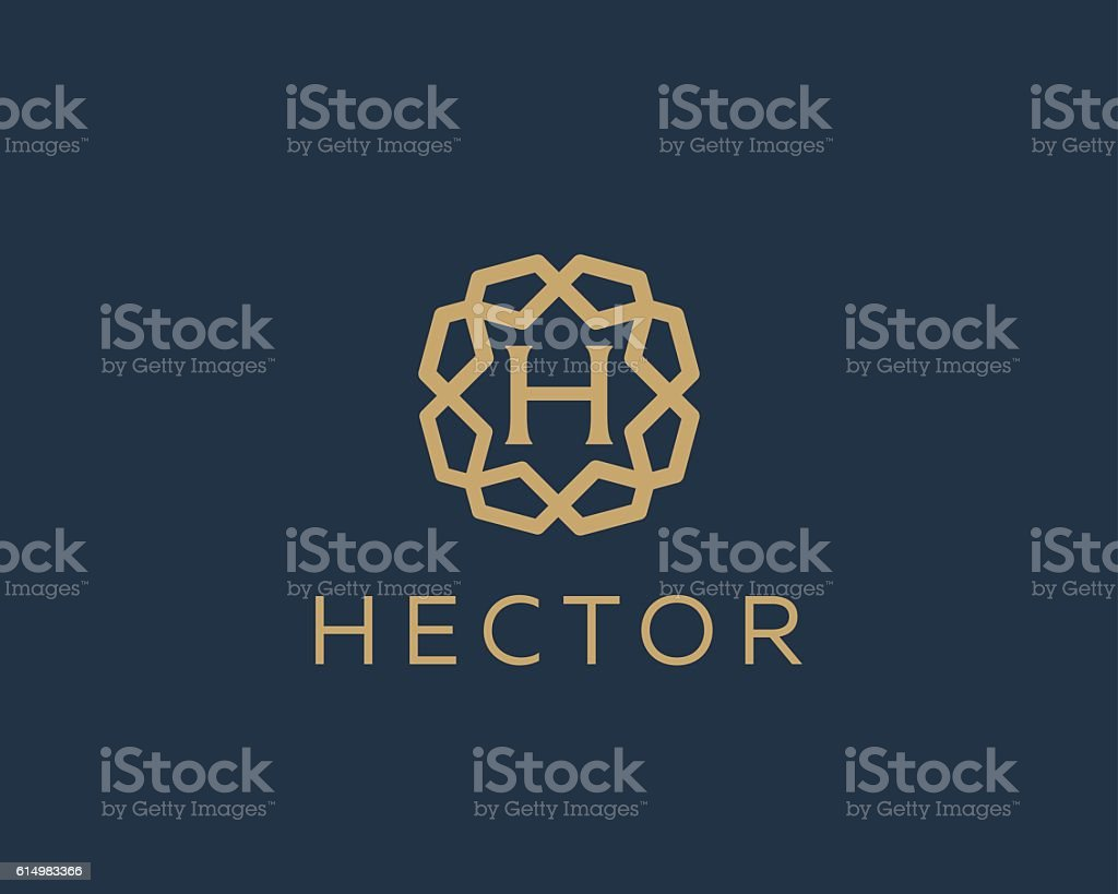 Premium letter H logo icon vector design. Luxury jewelry frame vector art illustration
