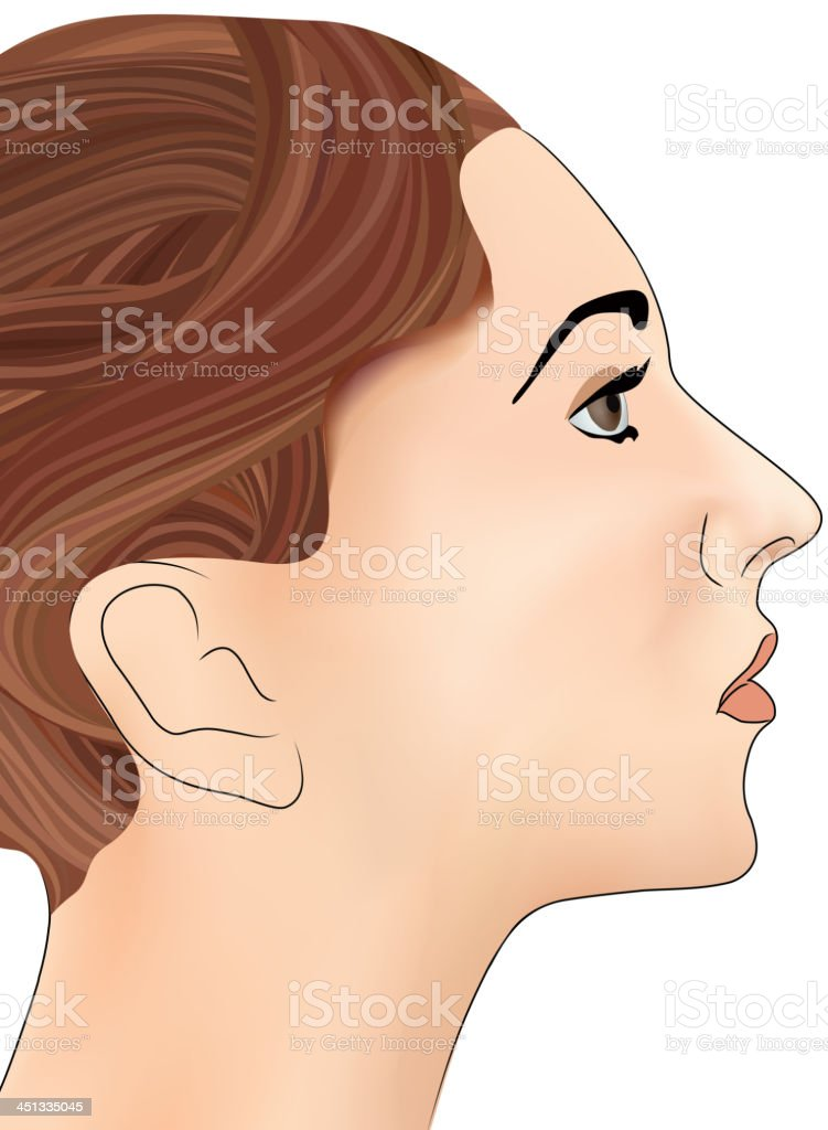Pretty Girls' profile royalty-free stock vector art