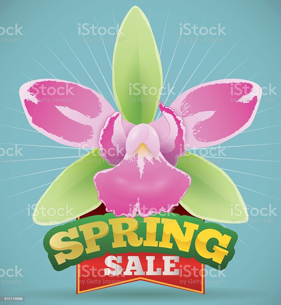 Pretty Orchid with Red Ribbon Announcing Spring Sale Season vector art illustration