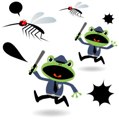 Prevention of Dengue Fever, Frog Police And Mosquito( Cops Chasing ) vector art illustration