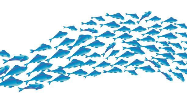 School of fish clip art vector images illustrations for Plenty of fish desktop