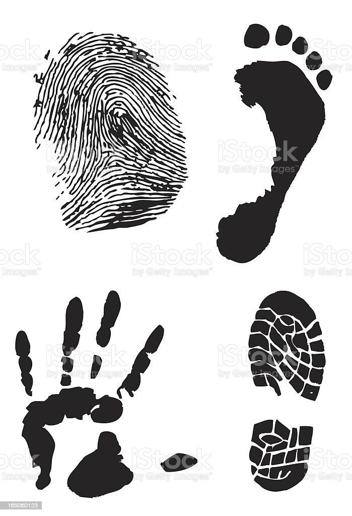 Prints or clues - vectorized vector art illustration