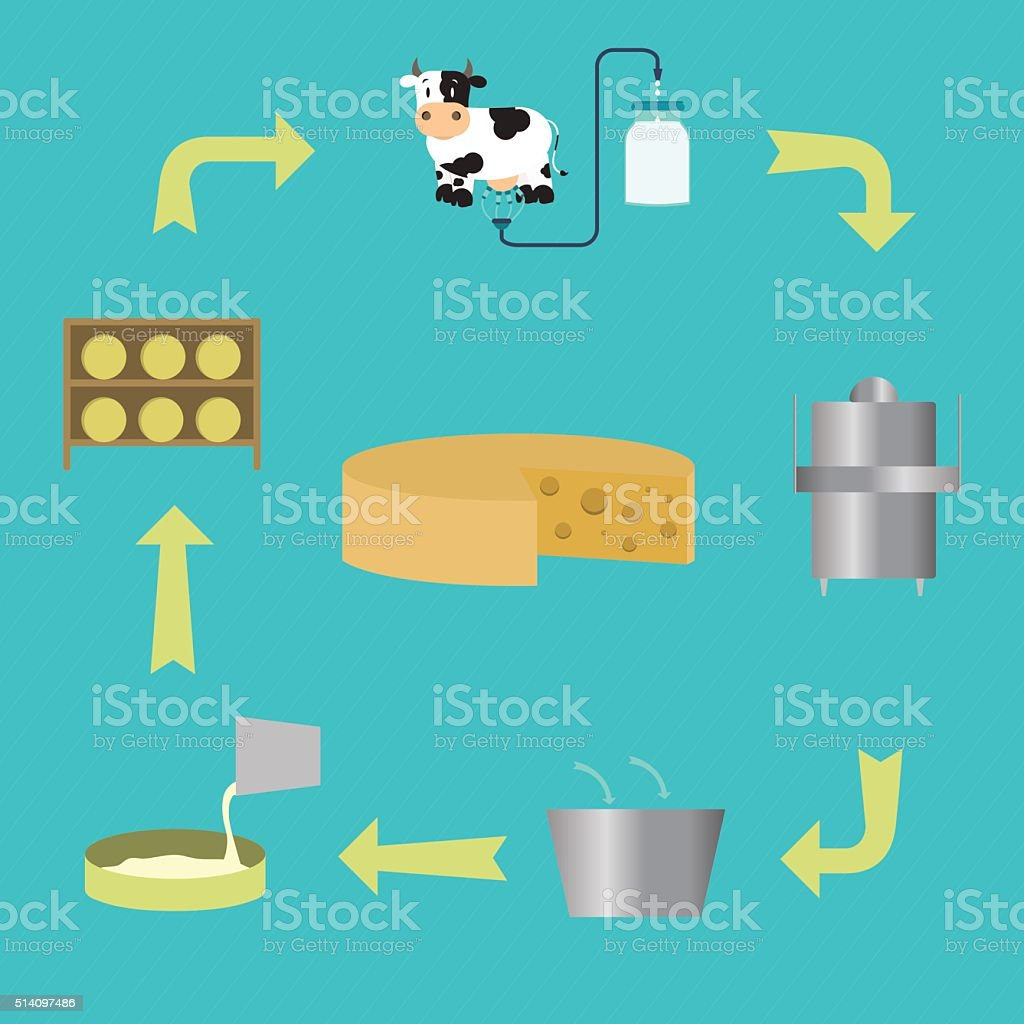 Process for manufacturing cheese vector art illustration